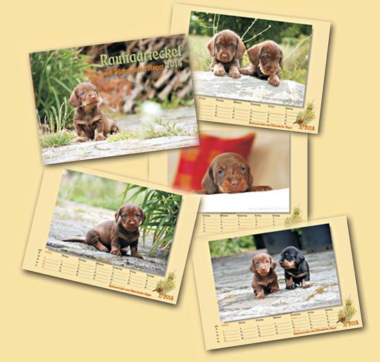 Teckelkalender